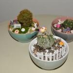 Diy: come realizzare un giardino in tazza