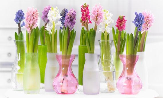 Decorazioni di primavera diy come arredare casa coi fiori for Arredare con i fiori