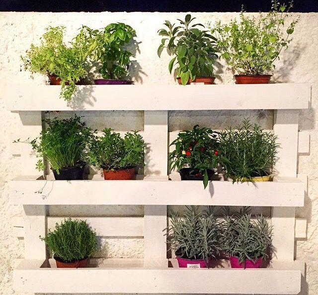 Pallet tre idee di riciclo per riutilizzarli in giardino - Porta piante fai da te ...