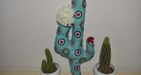 cactus imbottito