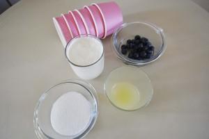 Ingredienti per gelato/sorbetto